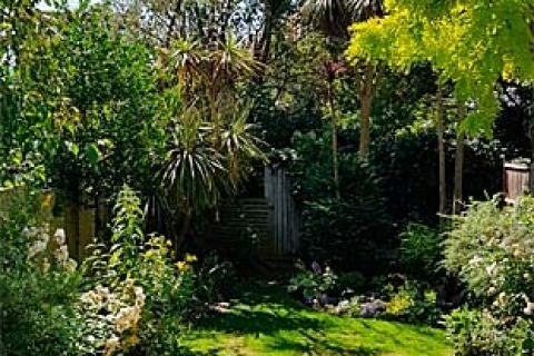 Cherryls Garten