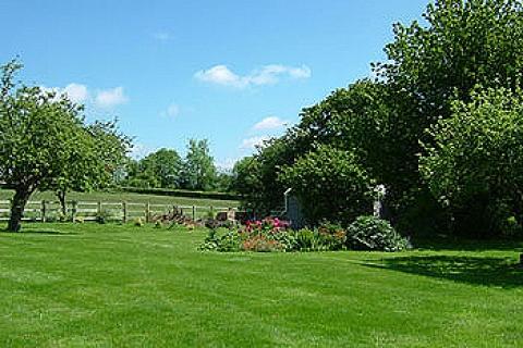 Garten & Umgebung