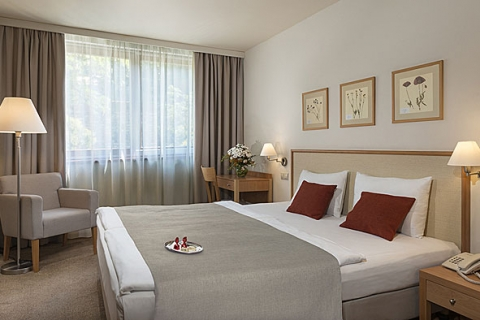 Ein Standard Doppelzimmer