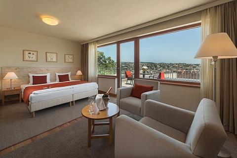 Ein Panorama DZ mit Terrasse