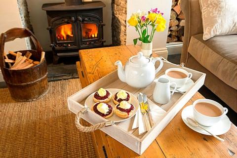 Cream Tea bei Ankunft im B&B Joanne in Cornwall