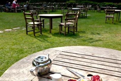 Devon Cream Tea im Exmoor
