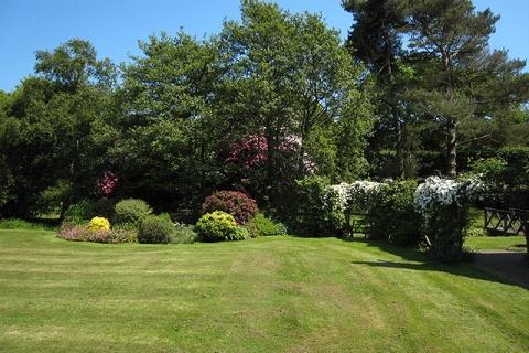 Weitläufiger Garten