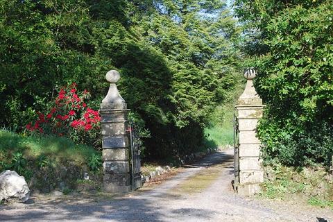 Einfahrt zu Violettas Anwesen